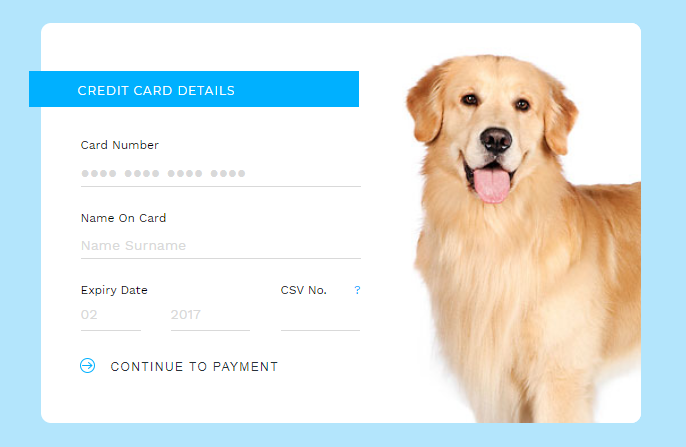 Clean and simple credit card payment checkout form