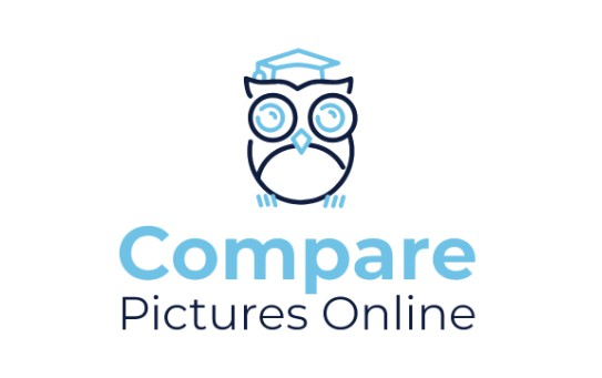 Comparing picture quality online